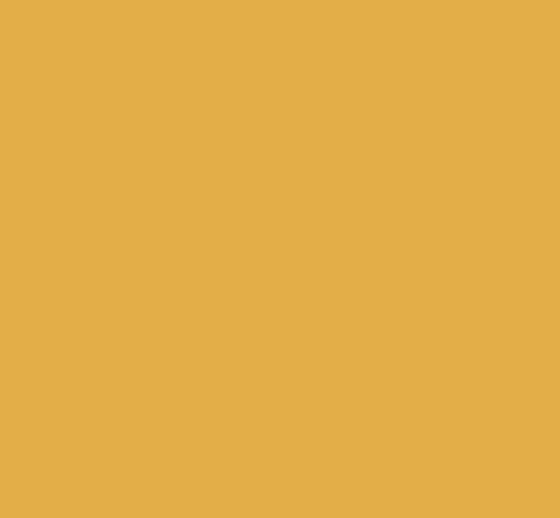 Bild Sterne Events Icon